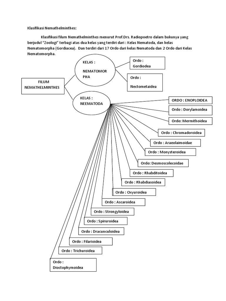 MOLLUSCA, ARTHOPODA DAN ECHINODERMATA - PDF Free Download