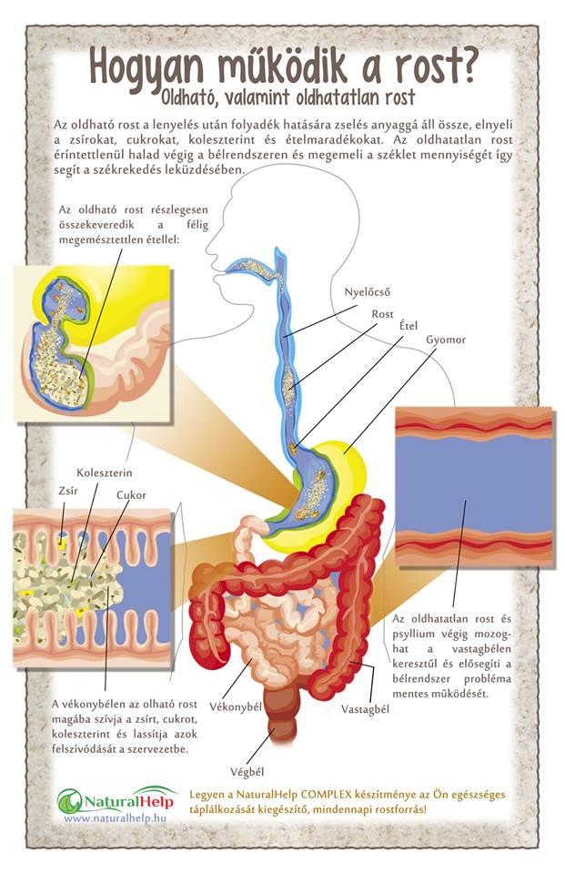 rost méregtelenítés kiegészítő pinworms, miután a pirantel kijött