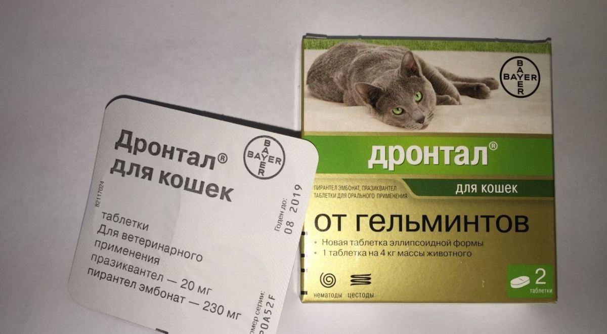 reakció antihelmintikus tablettákra