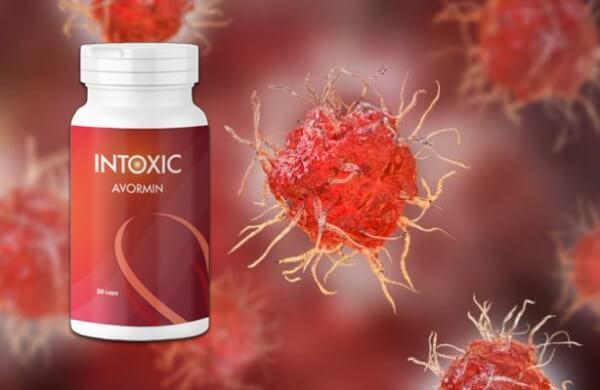 férgek elleni féreg elleni gyógyszerek áttekintése szivfergesseg kezelése