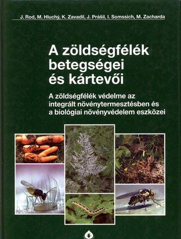 Szegfűszeg fűszer parazita kezelés, 9 gyógynövény, amely természetesen ölni parazitákat