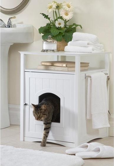 Tudja-e, hogy a macska miért tolja a fenekét a gazdája orrához?