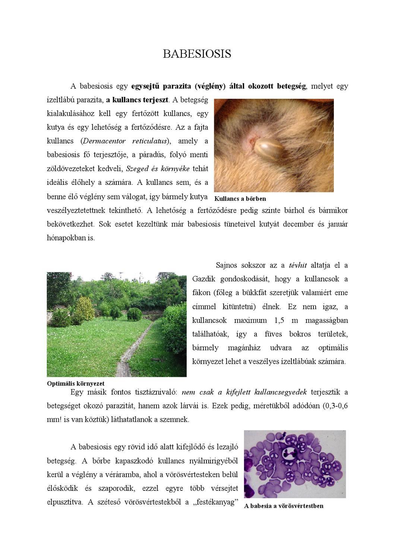 gyógynövények, amelyek eltávolítják a parazitákat
