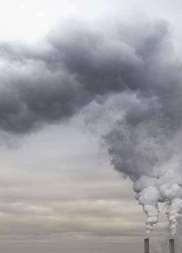 szag a szén-dioxid szájából parazita kapszula az emberek számára