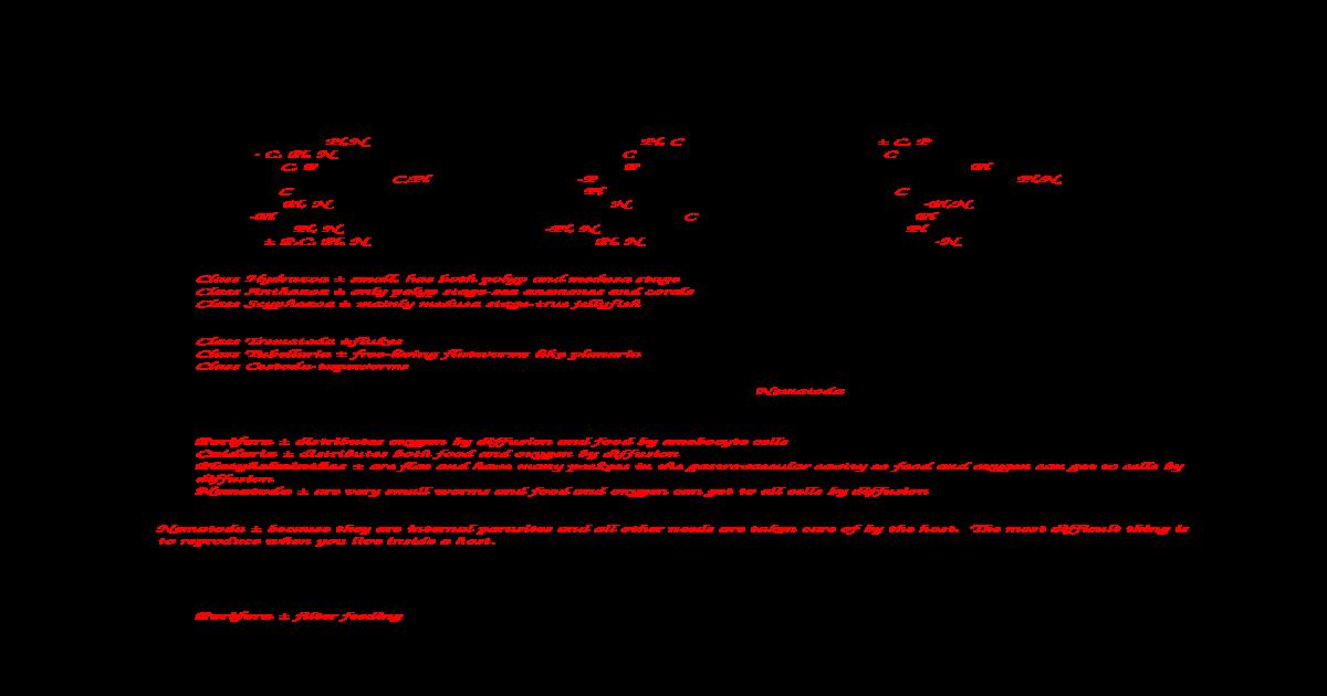 cnidaria platyhelminthes és annelida testtervei