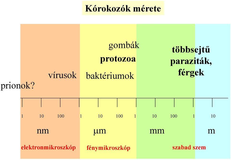 Betekintés: Dr. Szedlák-Vadócz Valéria - Táplálkozás és egészség