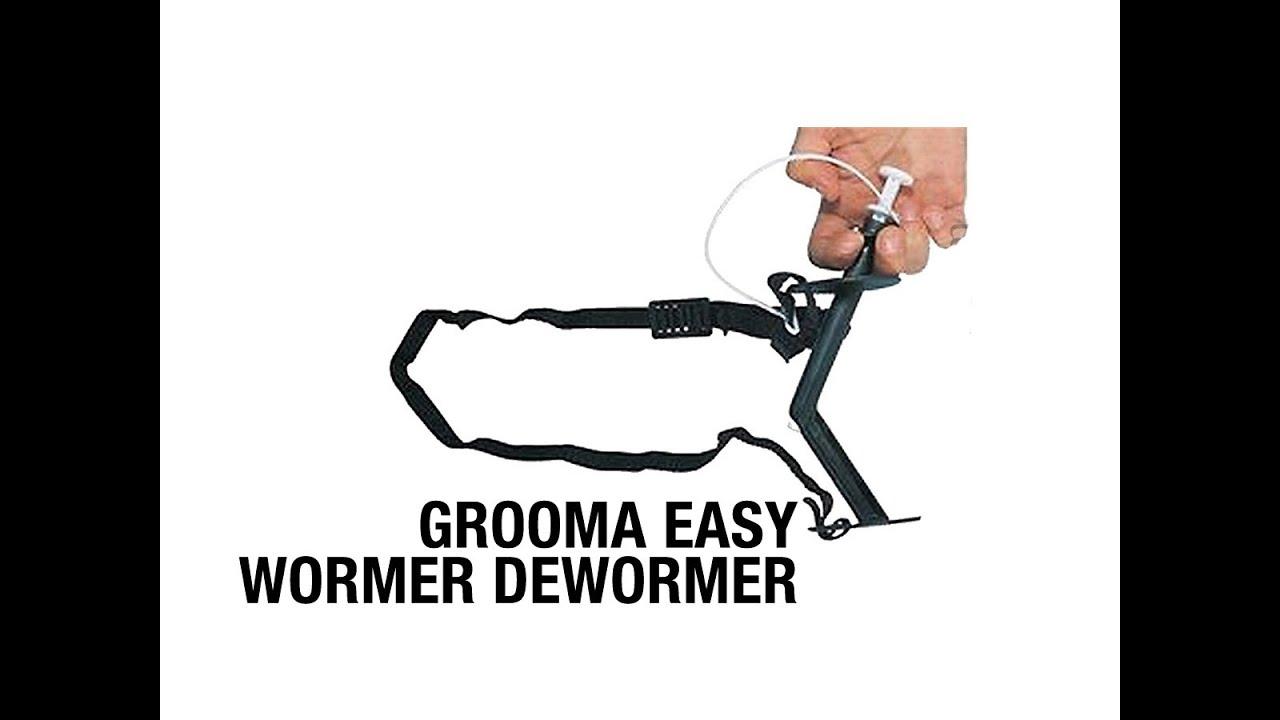 Deworming az emberek - a különböző folyamatok és hatékony gyógyszerek