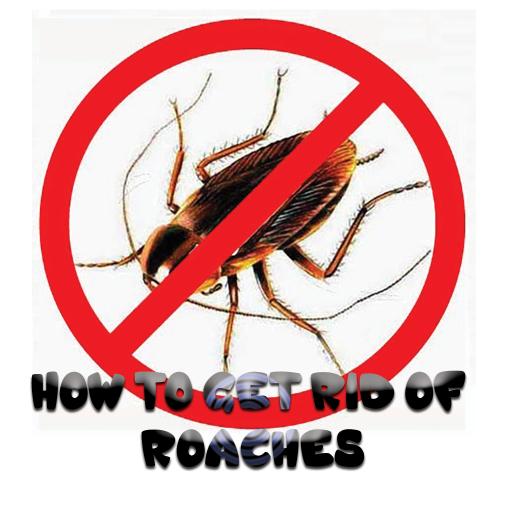 az emberekre veszélyes folyami paraziták kenet a férfiak felkészülésében