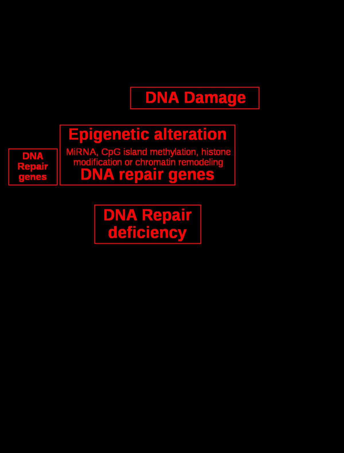 A Delix F parazitaellenes szerek esik