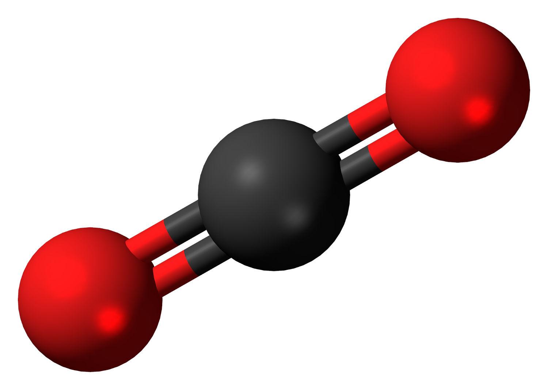 szag a szén-dioxid szájából eiazinofil giardiasis